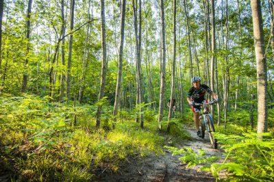 Vasa Pathway Biking