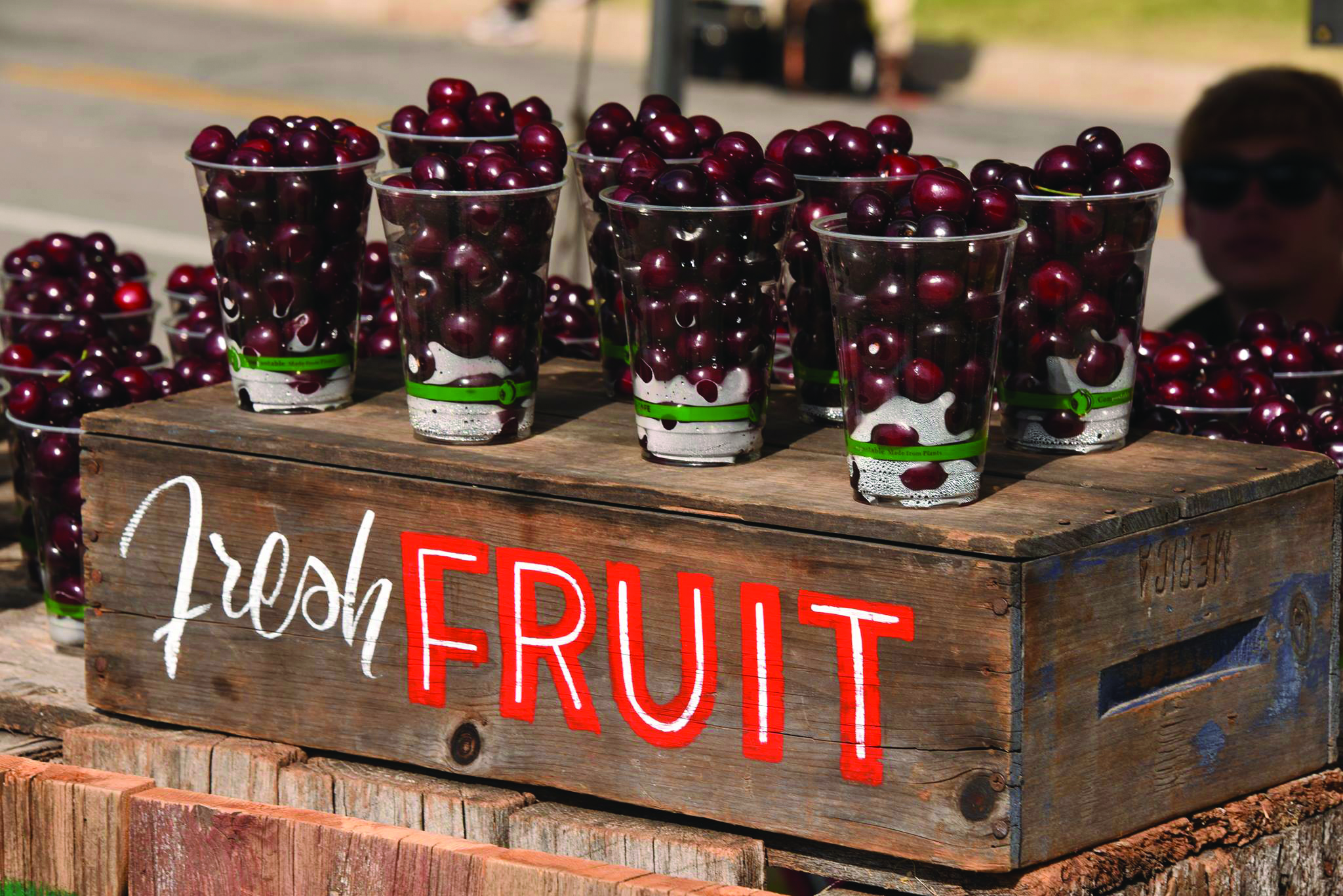 Cups of Cherries at the National Cherry Festival